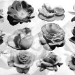 盛开的真实鲜花花朵图案PS笔刷下载