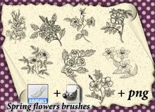 写实的植物花卉图案、野草野花PS花纹笔刷