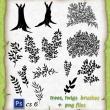手绘树叶、树枝图案、大树、树荫PS笔刷下载