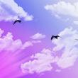 天空中的白云、光照效果Photoshop笔刷下载