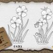 绽放的鲜花花朵、花卉图案PS笔刷下载(AI文件下载)