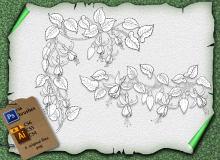 藤蔓式植物花纹素材PS笔刷下载(含ai矢量素材)