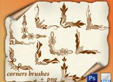 经典的植物印花边角装饰PS边框花纹笔刷