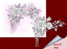 漂亮的玫瑰花花束素描图案PS笔刷下载(PNG图片格式)