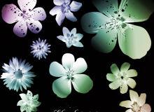 矢量式鲜花花朵图案装饰Photoshop笔刷下载