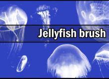 海洋中的水母图像Photoshop笔刷下载