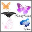 蝴蝶图案、昆虫蝴蝶PS笔刷下载