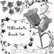 10种漂亮的鲜花花束、花纹装饰PS笔刷素材