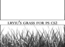 野草、小草、草丛Photoshop笔刷素材下载