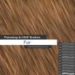 红发、绒毛材质、头发、毛发纹理PS发丝笔刷
