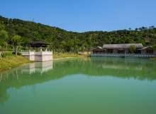 春意湖边、岸边、堤坝边PS照片背景下载(免费商用,超大分辨率)