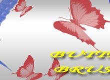 漂亮的蝴蝶、彩蝶标本图案PS笔刷素材