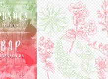 小清新风格的精美植物花朵纹理PS笔刷素材