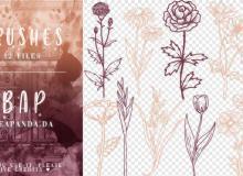 12种手绘鲜花花束图案PS笔刷素材