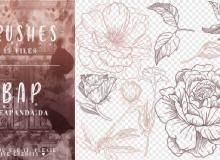 15种玫瑰花花朵、叶子手绘图案PS笔刷素材