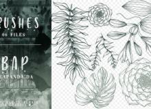 素描式花朵、叶子图案PS笔刷素材