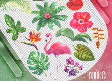 水彩绿叶、植物花朵、火烈鸟图案PS笔刷素材(PNG图片格式)