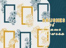 漂亮花朵边框装饰图案PS笔刷素材