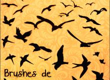 飞鸟剪影图形PS笔刷素材