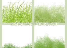 青草、小草、草丛纹理PS笔刷