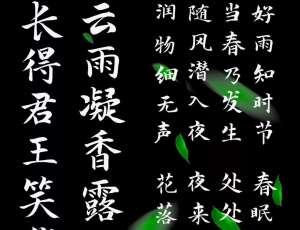 【演示春风楷-Slidechunfeng-Regular】面向全社会、全媒体免费可商用中文字体下载