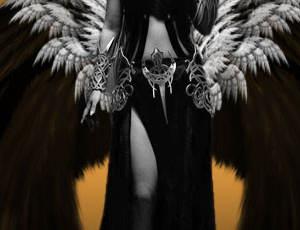 9种高清羽翼翅膀、天使羽毛翅膀PS笔刷