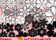 漂亮矢量花朵图形Ai笔刷素材