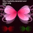花瓣翅膀图形PS笔刷