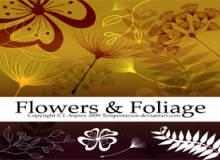 精美植物花纹、印花背景装饰PS笔刷