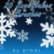 20种雪花图案、冰晶花纹PS笔刷