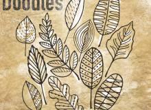 手绘涂鸦叶子、树叶图案PS笔刷