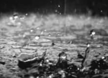 7种高清雨珠、水滴效果PS笔刷