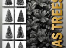10种高清圣诞树、雪松PS笔刷素材