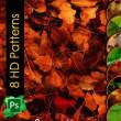 8种高清落叶、枯叶、叶子、树叶背景纹理PS填充素材