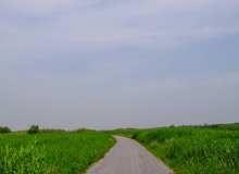 田园乡间小道背景照片、农村石子路图片