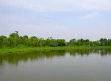 湖边绿地、蓝天碧湖照片