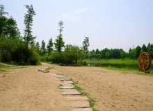 绿洲沙滩背景图片