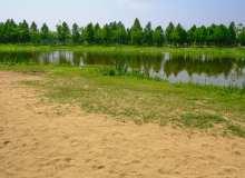 湖边沙滩背景照片
