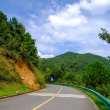 公路风景照片