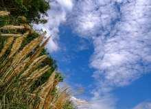 蔚蓝天空下背景照片