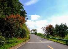 春光明媚下的马路背景照片
