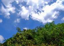 高清蓝天仰望图片素材