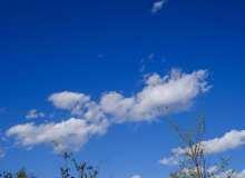 阳春三月蓝天背景照片