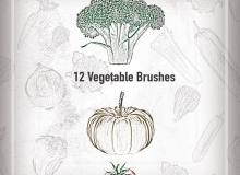 12种手绘素菜图像PS笔刷素材