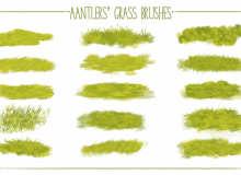青草、草坪纹理、草地地面材质、草原PS笔刷素材