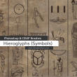 古埃及文字图案PS笔刷素材