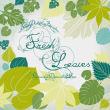 植物树叶、叶子、枫叶PS图形笔刷